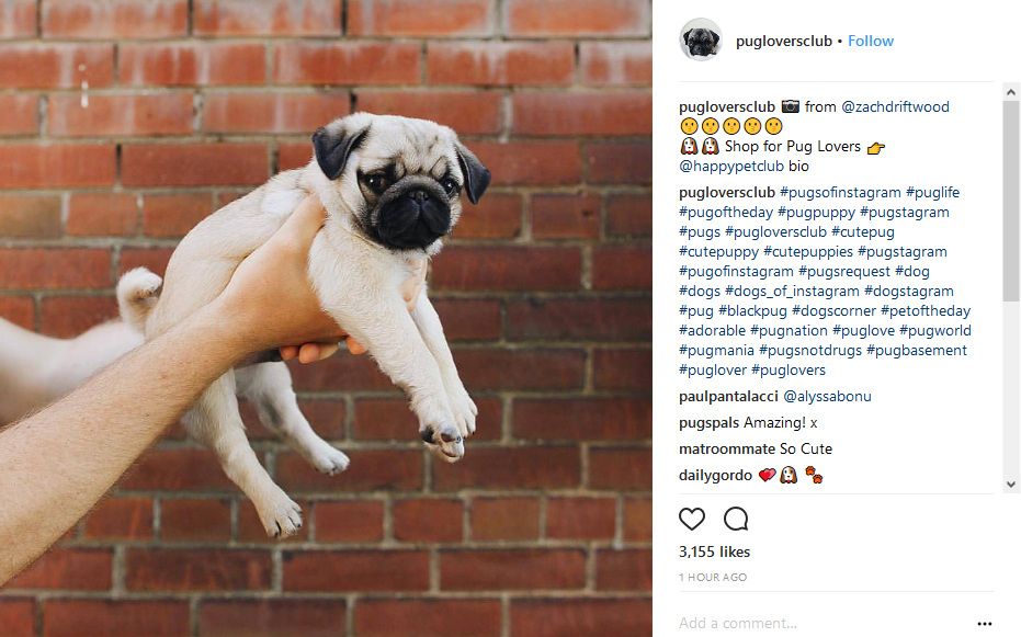 100 Popular Instagram Hashtags You Should Use on Every Post