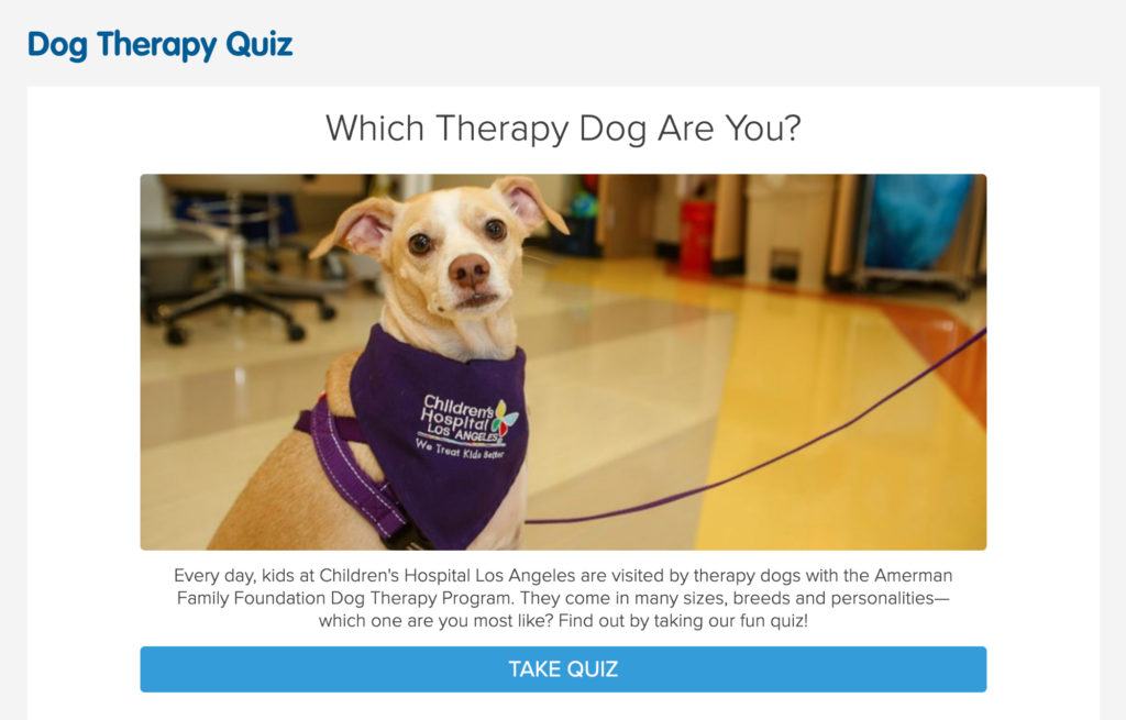 pet dog personality quiz example