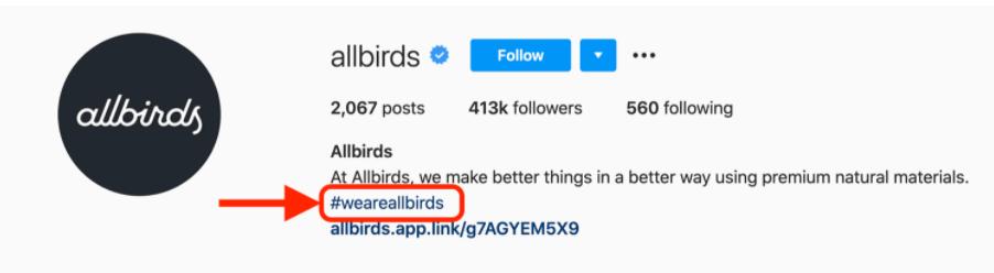 AllBirds instagram bio hashtag